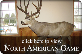 North American Game